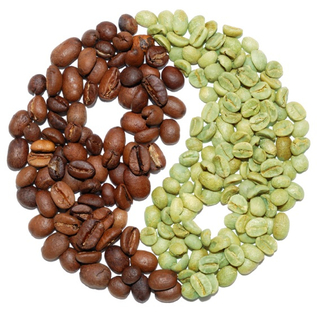 Cholorogenic acid is the compound in green coffee that helps you lose weight by reducing blood sugar levels, preventing fat formation and increasing fat burning.